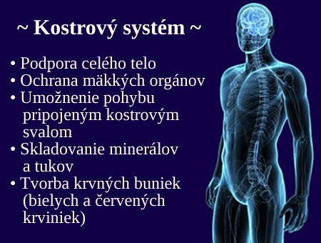 kostrovy-system